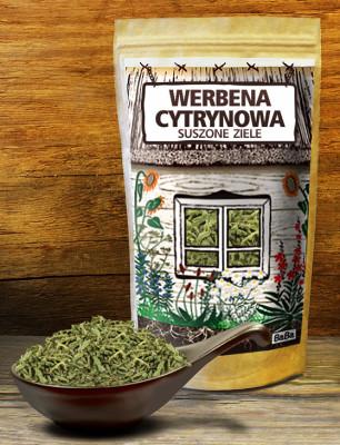 WERBENA_CYTRYNOWA